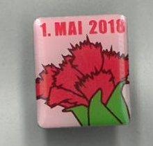 Pin 2018
